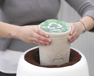 This Urn Brings New Meaning To Life After Death